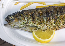 Grilled fish with a slice of lemon and some french fries Stock Images