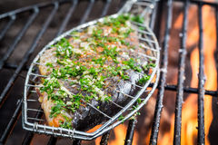 Grilled fish with spices on fire Royalty Free Stock Photo