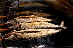 Grilled fish (Steckerlfisch) at Munich Oktoberfest Royalty Free Stock Image