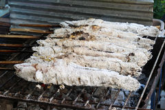 Grilled Fish, thai street food. Freshwater fish Grill,Striped snakehead fish Royalty Free Stock Photo
