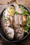 Grilled fish,trout Royalty Free Stock Photography