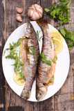 Grilled fish,trout Stock Photos