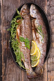 Grilled fish,trout Stock Images
