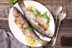 Grilled fish,trout Royalty Free Stock Photos