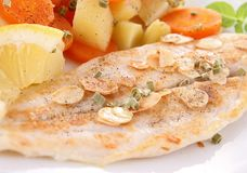 Grilled fish and vegetable royalty free stock images
