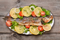 Grilled fish with vegetable Stock Image