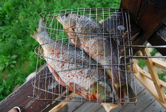 Grilled fish. Whole fish ready for the cooking on grill Royalty Free Stock Photography