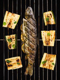 Grilled fish with zucchini Royalty Free Stock Photography