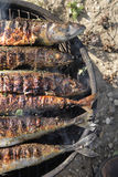 Grilled fishes background Stock Images