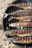 Grilled fishes background Royalty Free Stock Images