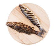 Grilled fishes Stock Images