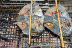 Grilled fishes Royalty Free Stock Photography