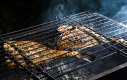 Grilled flounder on the grill Stock Image