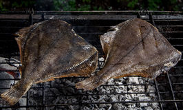 Grilled flounder on the grill Stock Photo