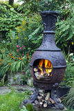 Grilled food over iron cast barbecue oven, with burning wood logs Stock Photography