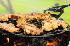 Grilled food on the plate Royalty Free Stock Photo