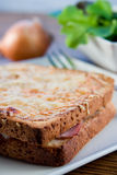 Grilled french sandwich with salad Stock Photos