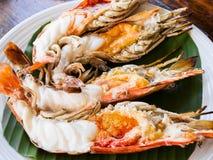 Grilled fresh big shrimp Stock Images