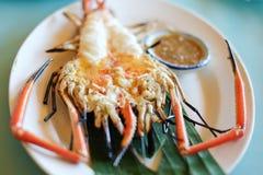 Grilled fresh big shrimp, river prawn Stock Photos