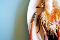 Grilled fresh big shrimp, river prawn Royalty Free Stock Images