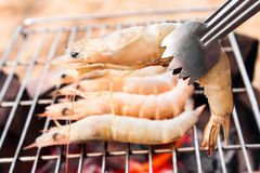 Grilled fresh prawns on flaming seafood Royalty Free Stock Photos