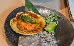 Grilled fresh scallop with soil sauce stock photos