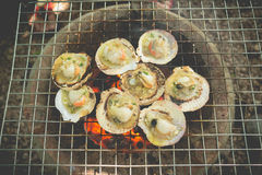 Grilled fresh scallops Royalty Free Stock Photo