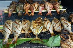 Grilled fresh seafood in local market, Mahé - Seychelles Island. Beau vallon stock photography