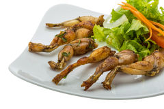 Grilled frog legs Royalty Free Stock Photos