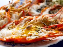 Grilled Giant River Prawns Or Giant Freshwater Prawns Royalty Free Stock Images