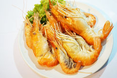 Grilled giant river prawns Stock Images