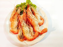 Grilled giant river prawns Stock Image