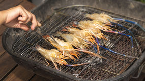 Grilled Giant River shrimp Stock Images