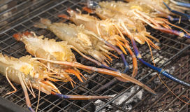 Grilled Giant River shrimp Royalty Free Stock Image