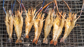 Grilled Giant River shrimp. On wood plates ,River prawn grilled on charcoal stove Royalty Free Stock Image