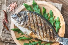 Grilled gilt-head bream with fresh arugula. On the plate stock photo