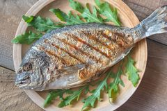 Grilled gilt-head bream with fresh arugula. On the plate royalty free stock images