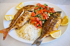 Grilled gilt-head bream and red snapper Stock Image