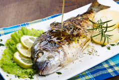 Grilled gilt head sea bream on plate Stock Photos