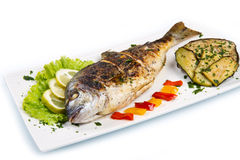 Grilled gilt head sea bream on plate with lemon ,salad and grill Stock Photos
