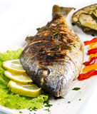 Grilled gilt head sea bream on plate with lemon ,salad and grill Stock Images