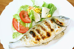 Grilled gilthead Stock Photos