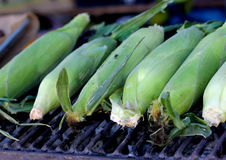 Grilled green maize corncobs for sale on the street. Royalty Free Stock Images