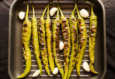 Grilled green pepper Royalty Free Stock Photos