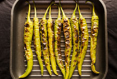 Grilled green pepper Stock Image