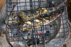 Grilled, Grill,  steel iron Heating, stove fire scorched food Royalty Free Stock Image