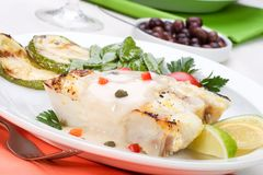 Grilled halibut Stock Images