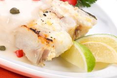 Grilled halibut Stock Photos