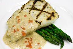 Grilled Halibut Entree Royalty Free Stock Photos