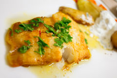 Grilled Halibut with Lemon Sauce Royalty Free Stock Images